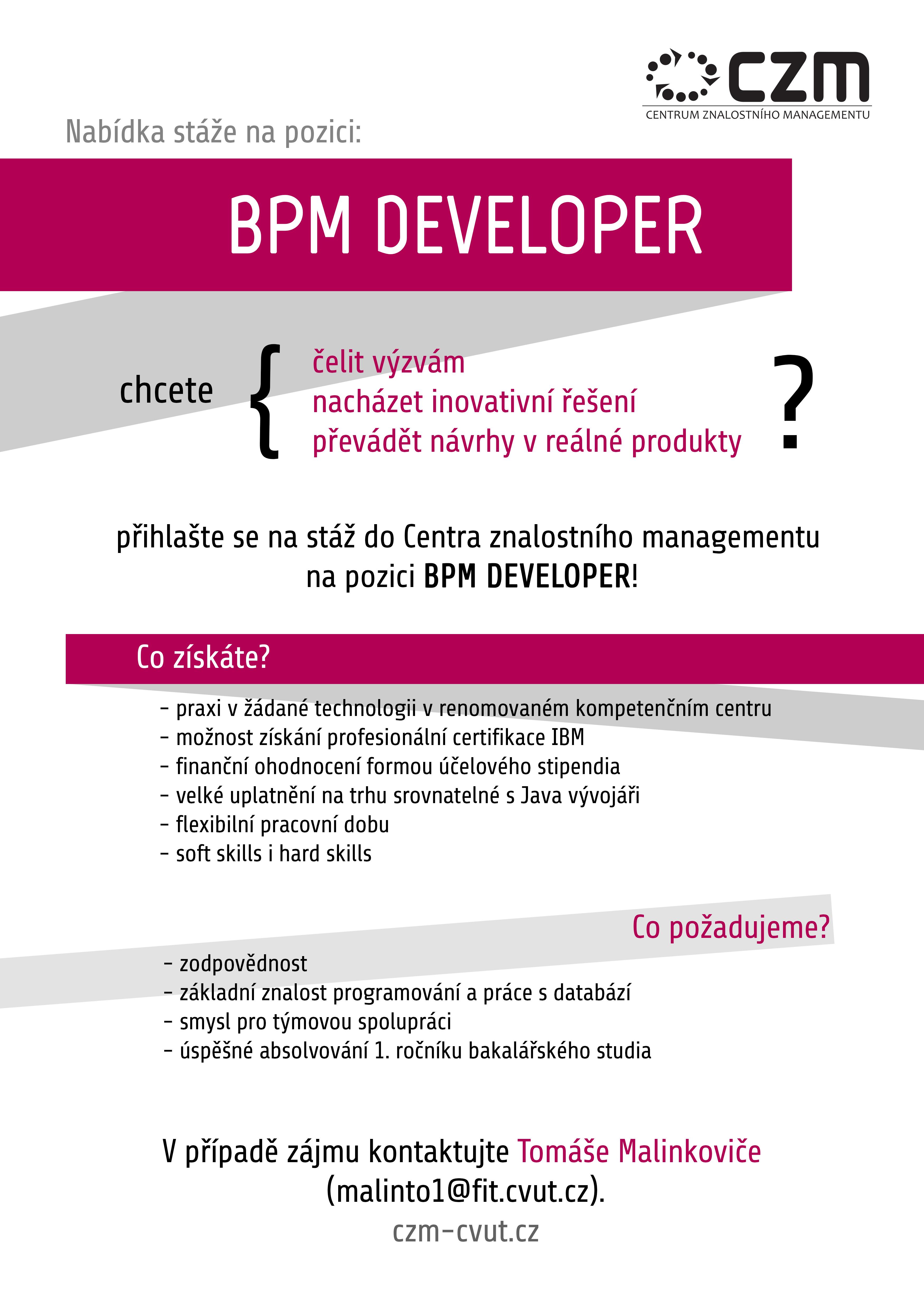 BPM Developer job